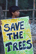 Child protesting illegal felling of trees for Blore Metro