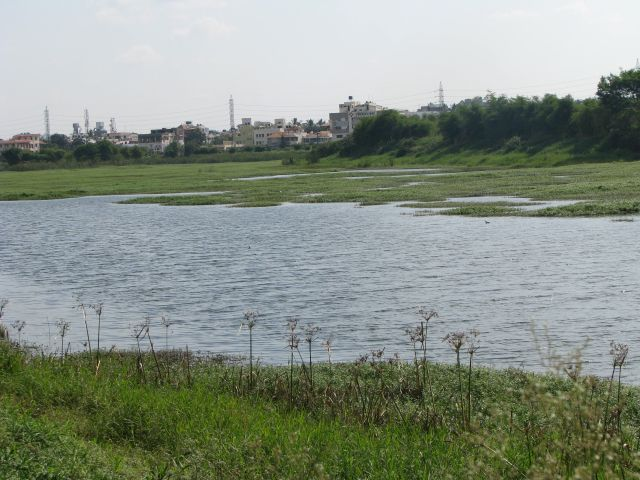 Activating A Lake Protection Committee In Your District