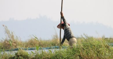 On World Wildlife Day, Prime Minister And UN Secretary General's Intervention Sought To Safeguard Indigenous Peoples Of Loktak Wetland Region